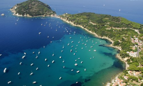 Isola d'Elba - Viticcio